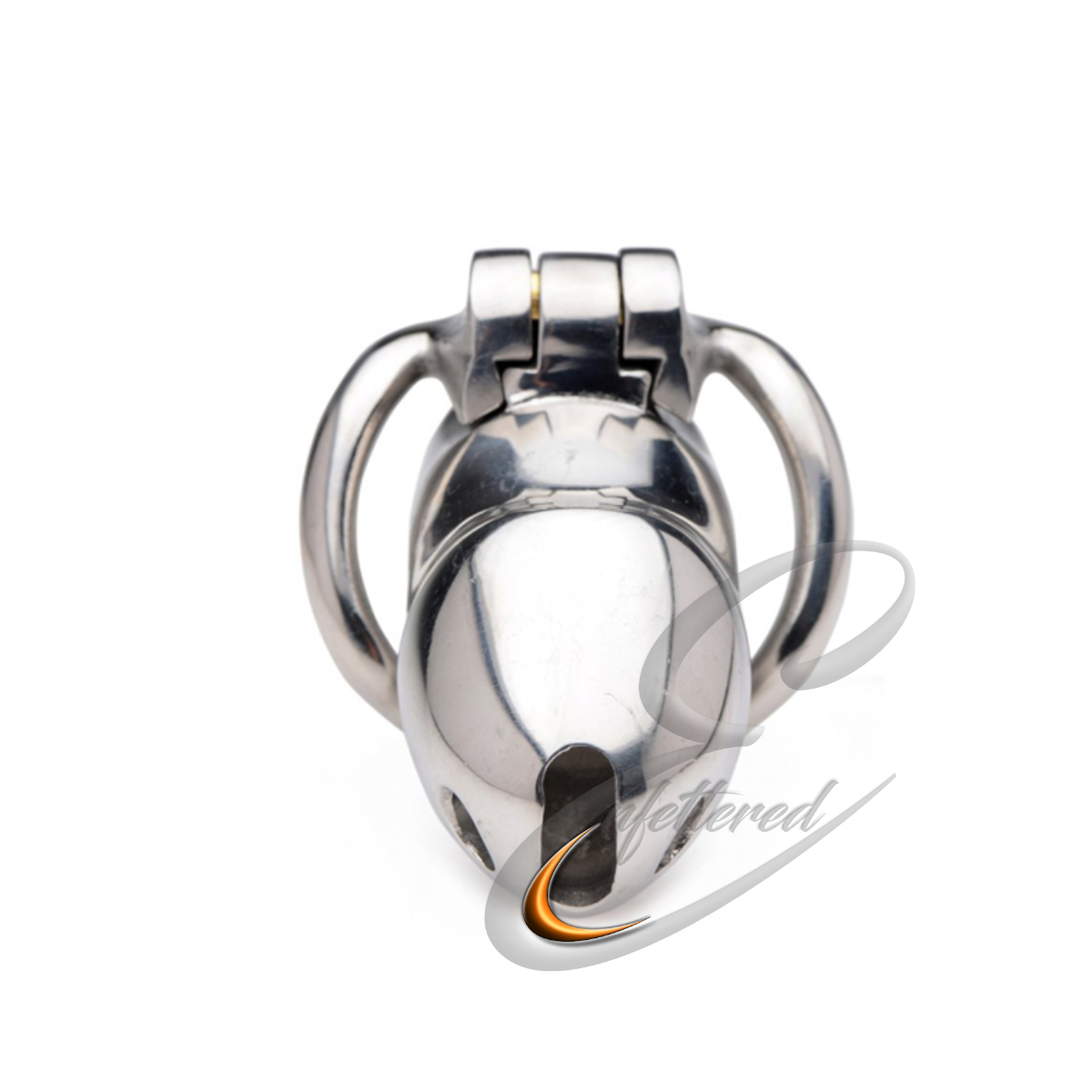 Enfettered Rikers Locking Chastity Cage